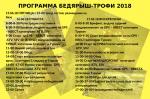 ПРРОГРАММА БЕДЯРЫШ-ТРОФИ 2018.png